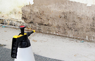 schimmel_desinfektion der feuchten Wand